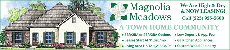 Magnolia Meadows Town Homes in Magnolia Springs