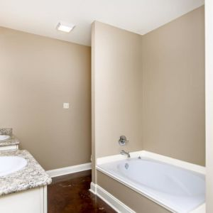 Dual vanities, Garden tub, and shower in the master bathroom